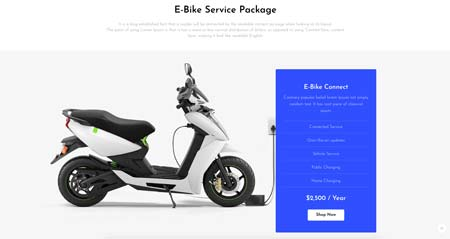 eco-scooter_pricing_page_01
