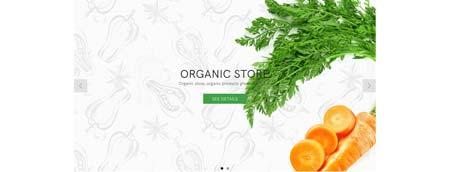 organic01_home_01